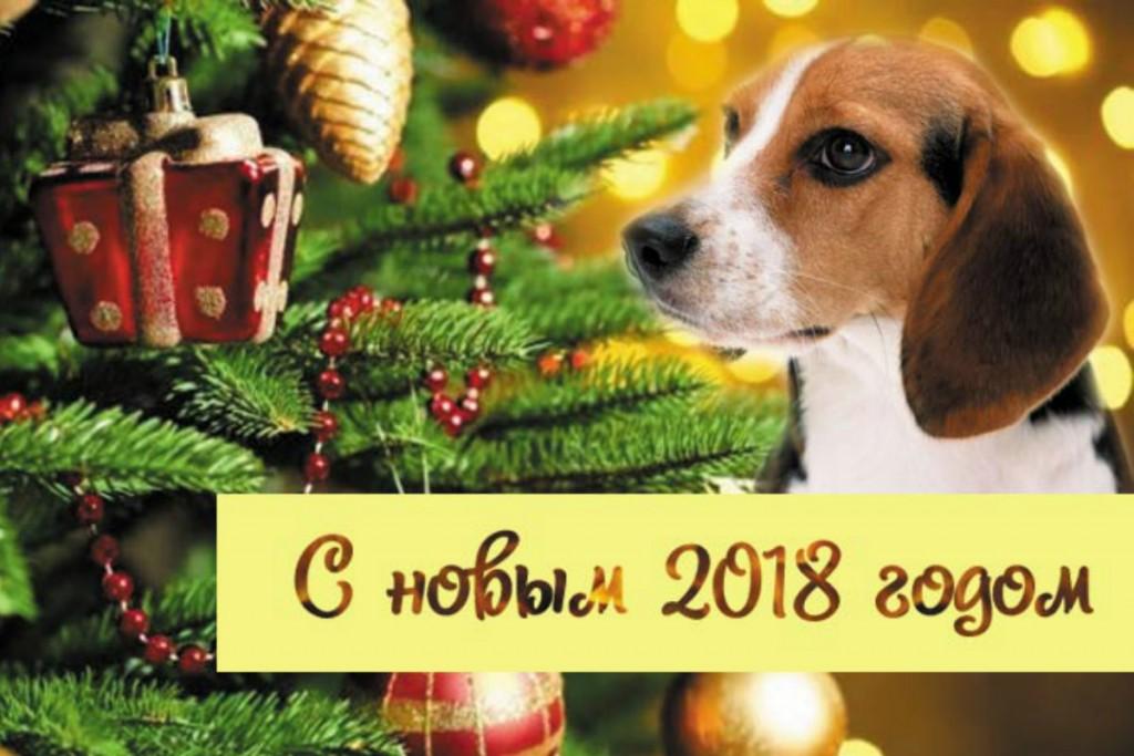 ПОЗДРАВЛЕНИЯ С НОВЫМ 2018 ГОДОМ